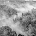 Mountain Mist by Thomas R Fletcher
