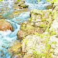 Pocono Mountain Stream, Pennsylvania by A Gurmankin