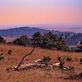 Autumn Day At Custer State Park South Dakota by Gerlinde Keating - Galleria GK Keating Associates Inc