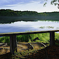 A Bench To Ponder by Anthony J Padgett