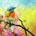 A Bluebird On The Redbud by Lois Bryan