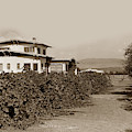 A California Residence Showing Orange Groves In Hill At Eleter by California Views Archives Mr Pat Hathaway Archives