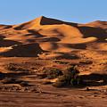 A Caravan In The Desert by Claudio Maioli