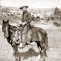 A Cowboy On Horseback, Photo, 19th Century by American School