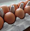 A Dozen Good Eggs by Connie Fox