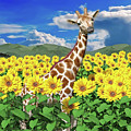 A Friendly Giraffe Hello by Betsy Knapp