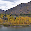 A Glacier Autumn On The North Fork Of The Flathead River by Bruce Gourley