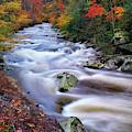 A River Runs Through Autumn by Greg Norrell