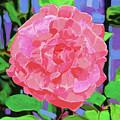 A Rose With Heart by Deborah Boyd