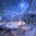 A Starry Night In The Desert by Ramona Murdock