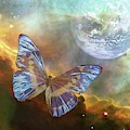 A Stellar Adventure by Ramona Murdock
