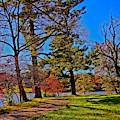 A Walk By The Lake by Allen Nice-Webb