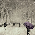 A Walk In The Snow In The Park New York by Movie Poster Prints