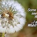 A Weed Or Wish? by Linda Vanoudenhaegen