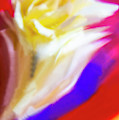 A White Rose In An Abstract Style. by Alexander Vinogradov