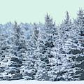 A Winter Scene by Dan Sproul