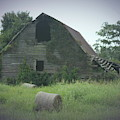 Abandoned Barn And Hay Roll 2018c by Cathy Lindsey