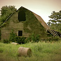 Abandoned Barn And Hay Roll 2018d by Cathy Lindsey