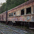 Abandoned Train Cars  by Terry DeLuco
