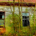 Abandoned In Color by Debra Lynch