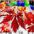 Abstract Fall Acer Stained Glass  by Mo Barton
