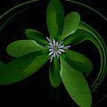 Abstract Flower 23 by Scott Wallace Digital Designs