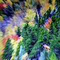 Abstract Forest Photography 5501d3 by Ricardos Creations