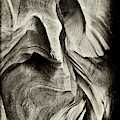 Abstract In The Slots Sandstone by Paul W Faust - Impressions of Light