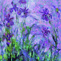 Abstract Realism Field Of Iris In Spring by Isabella Howard