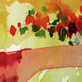 Abstract Red Poppies Panorama by Ginette Callaway
