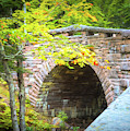 Acadia National Park - Amphitheater Bridge by Anita Pollak