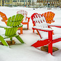 Adirondack Chairs In The Snow by Nick Zelinsky
