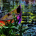 Adirondack Guide Boat by David Patterson