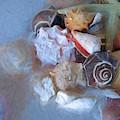 Adjacent Shells With Chalk Effect 24 by Lynda Lehmann