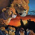 African Cats by Stanislav Atanasov