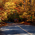 Afternoon Foliage Ride by Jeff Folger