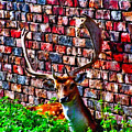 Against The Wall by Abbie Shores