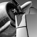 Airplane Propeller by Edward Fielding
