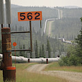 Alaskan Pipeline 2997 by Ericamaxine Price