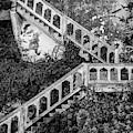 Alcatraz Vi Bw by David Gordon