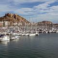 Alicante Marina And The Santa Barbara Castle by Leighton Collins