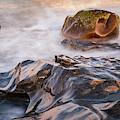 Allens Pond Xvii Color by David Gordon