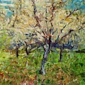 Almond Orchard by Dragica Micki Fortuna