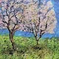 Almonds In Full Bloom by Dragica Micki Fortuna