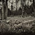 Alpine Benders Cemetery by Mark Jordan