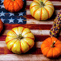 American Autumn Harvest by Garry Gay