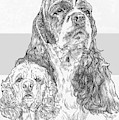 American Cocker Spaniel And Pup by Barbara Keith
