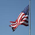 American Flag Waving by Edward Fielding