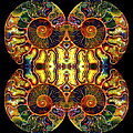 Ammonite Mandela - 044.2 by Paul W Faust - Impressions of Light