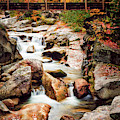 Ammonoosuc River, Autumn by Jeff Sinon